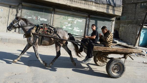 Young men ride a horse cart in the northern Syrian city of Aleppo last year. Many young Syrian men stay indoors and off the street because they are afraid they may be detained as suspected rebels or rebel sympathizers.