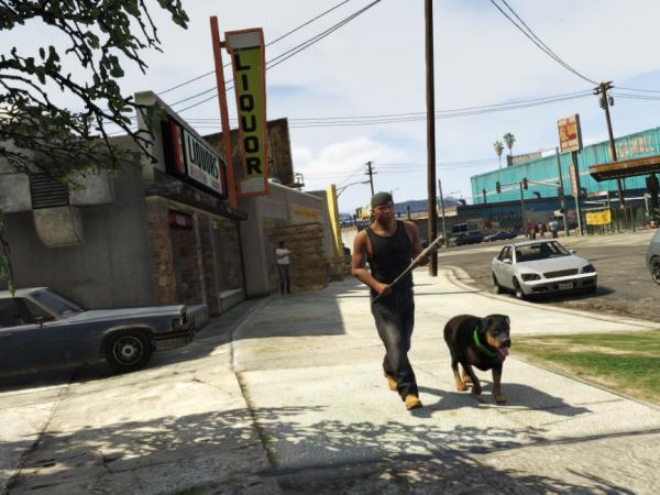 This guy and his dog are doing all they can to contribute to the world of <em>Grand Theft Auto V</em>.