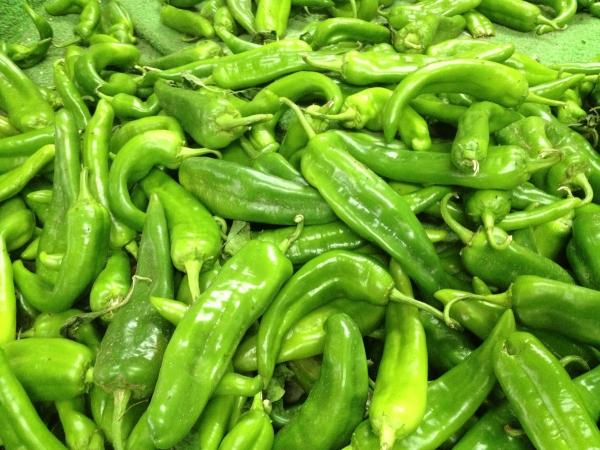 Fresh picked green chiles are bound for stews, burritos, enchiladas, pozole and more. Fall is chili roasting season in New Mexico.