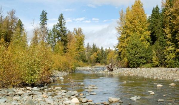 The North Fork of the Teanaway River is where the 50,000 acre land acquisition starts. The Washington Departments of Fish and Wildlife and Natural Resources will manage the land together.