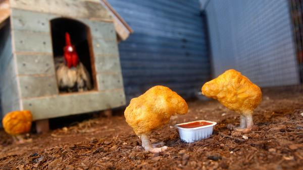 "<em>Chicken Nuggets</em>, from artist Banksy's 2008 installation ""The Village Pet Store and Charcoal Grill"" in New York City."
