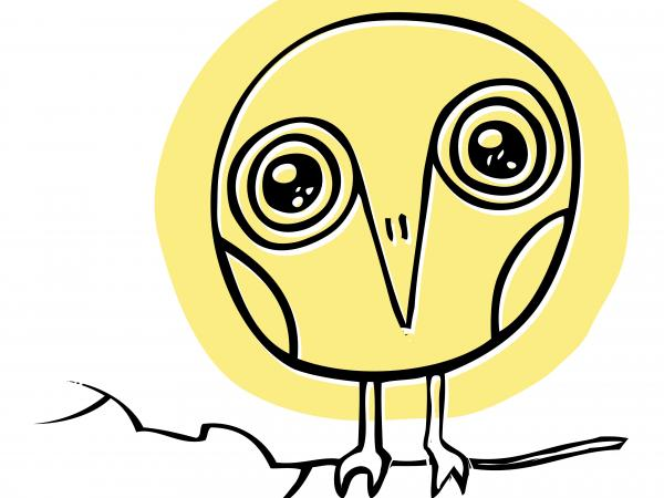 David Sedaris's new book <em></em>is called <em>Let's Explore Diabetes With Owls.</em>