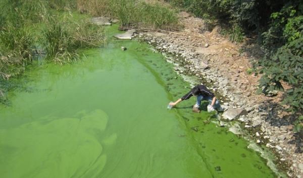 Researchers take samples from Lake Taihu in China, when it was heavily contaminated with toxic algal blooms.