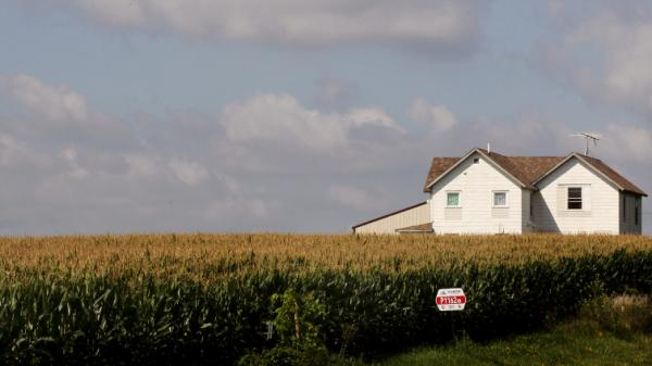 This year, U.S. corn farmers have planted more acres of the crop than at any time since the Great Depression.