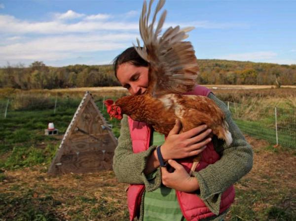 Chris Costa and one of her chickens on her farm in Downingtown, Pa. Costa and her partner, T.J., found the land for this farm through a sustainable agriculture program.