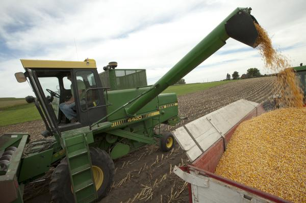 Farmer Randy Dreher unloads corn from his combine during harvest north of Audubon, Iowa. Farm exports are booming and high global prices are helping growers despite the U.S. drought.