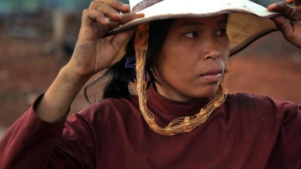 In the mountainous jungles of northeastern Cambodia, Sav Samourn depends on the forests to feed her family. She has come to fear loggers more than the dangerous jungle animals that once plagued her people.