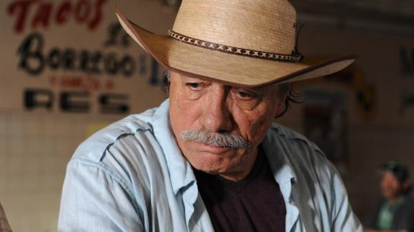 In <em>Go for Sisters</em>, former cop Freddy Suarez (Edward James Olmos) agrees to help a parole officer track down her wayward son along the U.S./Mexico border.<em></em>