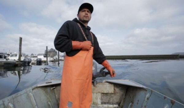 Native fishermen on the Pacific coast are seeing fewer cold water animals and reporting more sightings of warmer water species. Humboldt squid are being reported in waters off OR, WA, and BC. Ten years ago, sightings north of San Diego were rare.