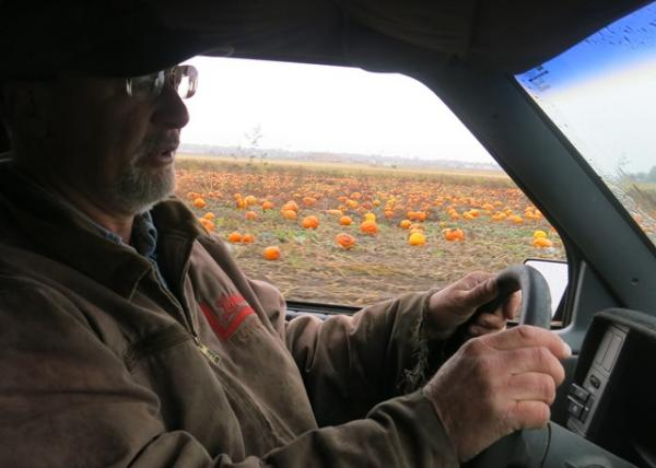 Ackerman leads group tours at his 30-acre backyard pumpkin patch