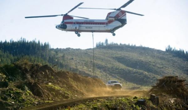 A Chinook helicopter descends toward a clearing near Cannon Beach's Ecola Forest Reserve for refueling Oct. 29. The helicopter relocated trees as part of a salmon habitat restoration project.