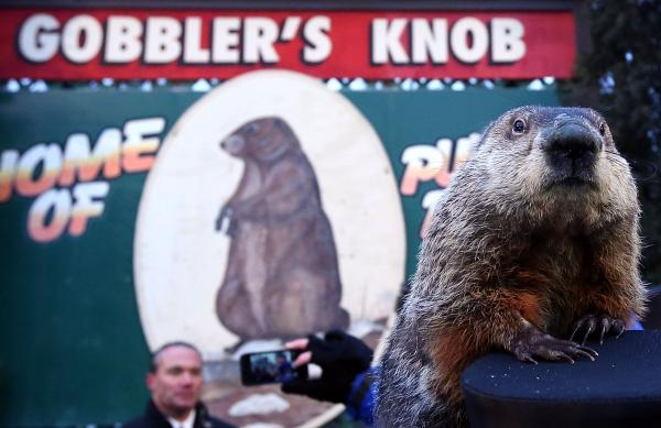 "In Bill Murray's ""Groundhog Day,"" Punxsutawney Phil checks for his shadow every day on repeat. Some NPR listeners say they can relate."