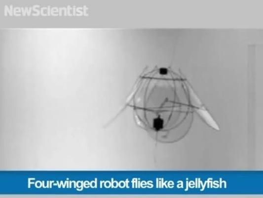 "The ""jellyfish"" in flight."