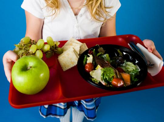 The new nutrition standards will replace school lunch dishes like pizza sticks with salad.
