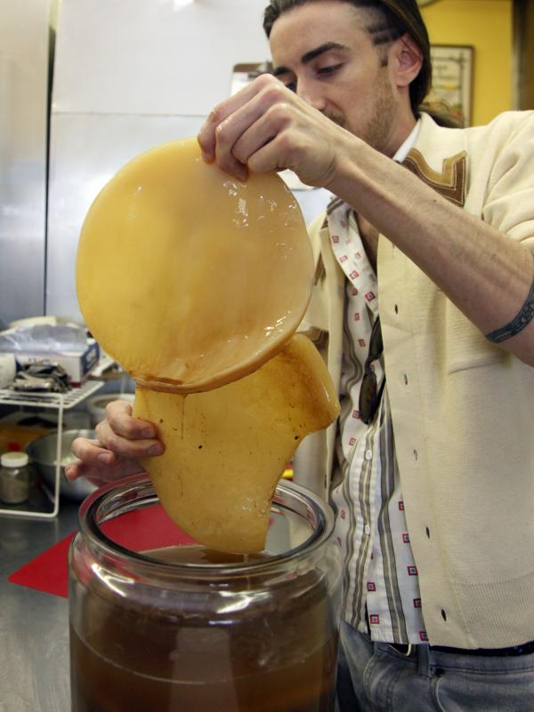 "The SCOBY: Bill Bond, of Bucha Bill Raw Kombucha, shows off the ""symbiotic colony of bacteria and yeast"" in his fermented tea. The microorganisms of the SCOBY convert the sweetened tea into the fizzy elixir."