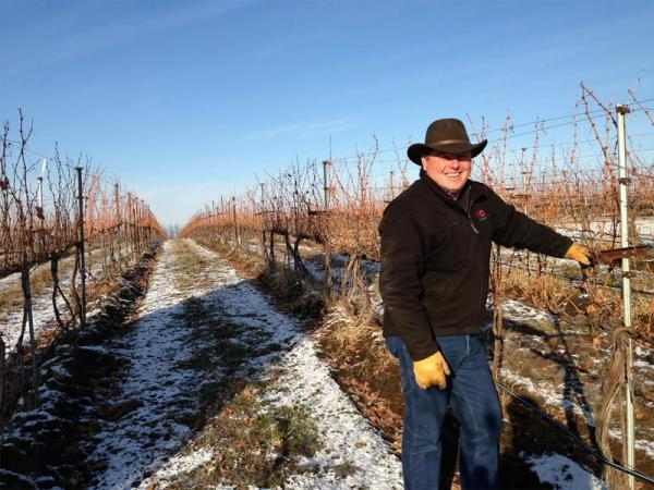 Tom Waliser manages some of the best-known vineyards in the Northwest.