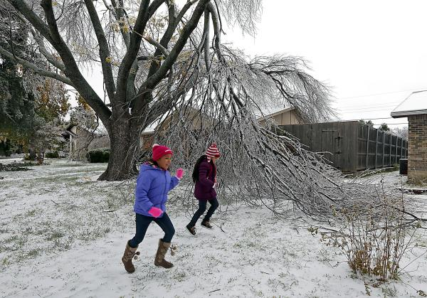 Six-year-old Enari Hernandez (left) and her cousin Maritza Jimenez, 6, play in front of a damaged tree in their neighbors yard on Saturday in Plano, Texas.