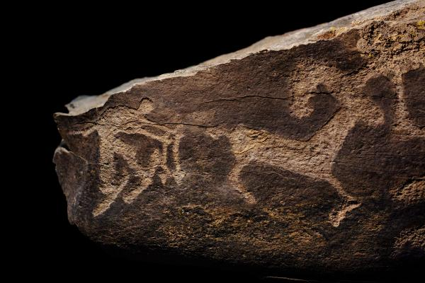 Scientists say the Altai hunter's lifestyle extends back thousands of years, as evidenced by this ancient rock engraving of a skier chasing an ibex.