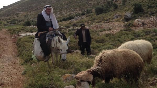 A Palestinian shepherd near Beit Fajar in the West Bank wears the real deal. Tourist versions of this traditional Arab male headcovering start around $10. But remember to bargain.