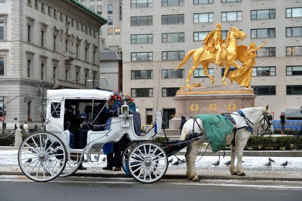A horse-drawn carriage is seen near Central Park January 2, 2014 in New York. New York City Mayor Bill de Blasio has announced he would like the city council to outlaw the horse-drawn carriages and have them replaced by electric antique cars. (Stan Honda/AFP/Getty Images)