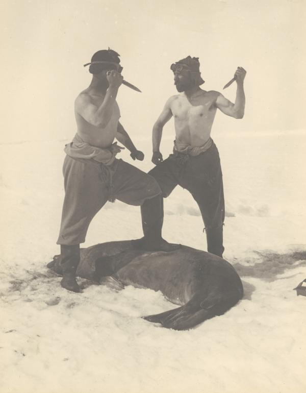 Frank Wild — Ernest Shackleton's second-in-command on the <em>Endurance</em> voyage — and M.H. Moyes slay a Weddell seal.