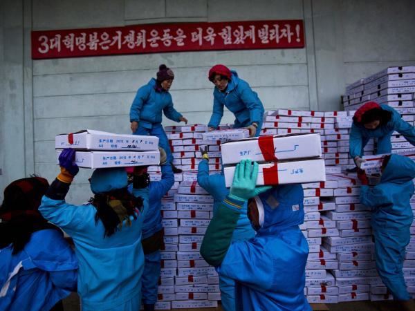 North Korean workers load boxes of seafood onto a Chinese truck at a seafood factory in Rajin, North Korea, on Nov. 8, 2013. Foodstuff factories are among the few still functioning in North Korea.