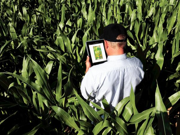 Companies, like John Deere, that are collecting farmers' data may be able to see how much grain is being harvested, minute by minute, from tens of thousands of fields.