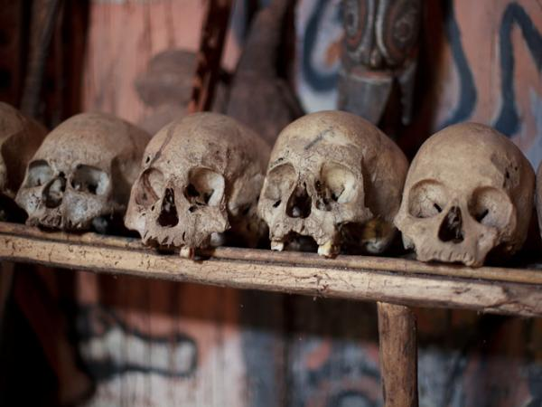 Cannibalism was practiced in Papua New Guinea up until the 1930s. These skulls in a ceremonial men's hut represent the old custom.
