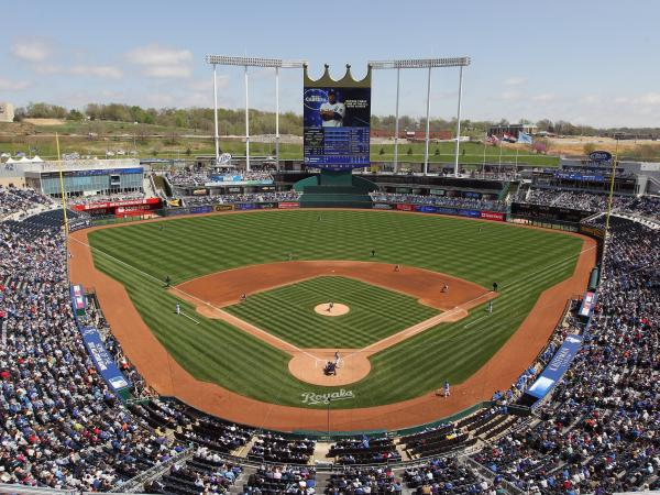 "The Kansas City Royals professional baseball team is among more than 500 groups and individuals listed by the NRA as ""anti-gun."""