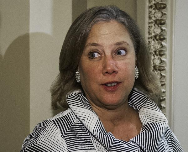 Sen. Mary Landrieu, D-La., on Capitol Hill in December.