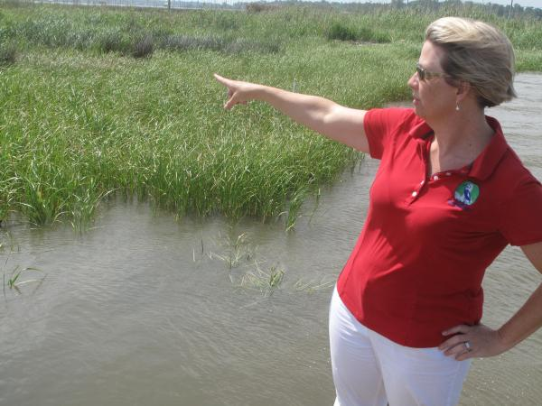 Casi Callaway of Mobile Baykeeper points out new marsh grass on the western shore of Mobile, Ala. Volunteers created an oyster reef just off the shoreline at this Mobile park, one of the first coastal restoration projects in the aftermath of the 2010 BP oil spill.