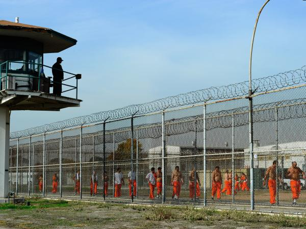 A California Department of Corrections officer looks on as inmates at Chino State Prison exercise in the yard in 2010.