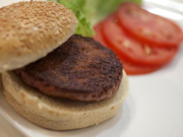Scientists say commercial production of cultured beef could begin within 10 to 20 years.
