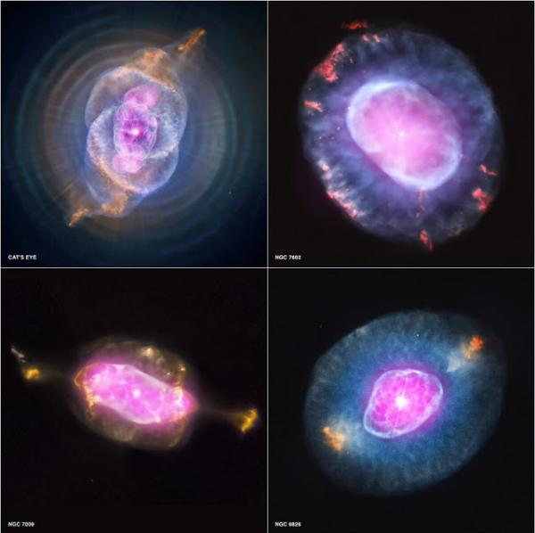 Four examples of wind-blown bubbles surrounding dying, sun-like stars. In each case the violence of collision between the wind and the surrounding gas creates a bubble filled with million-degree gas (pink) that is bounded by cooler, denser material.