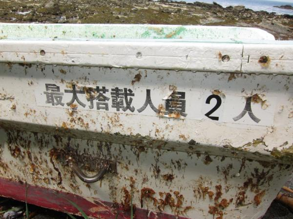 Japanese writing on the derelict skiff was used to trace ownership and confirm the craft washed away in the March 2011 tsunami.