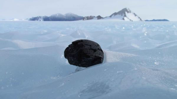 The most abundant meteorites found in Antarctica are called chondrites. They are some of the oldest objects known in the solar system.