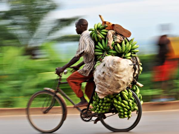 A banana seller makes his way to the market in Burundi's capital, Bujumbura. The small country in eastern Africa ranked last in terms of malnutrition in children.