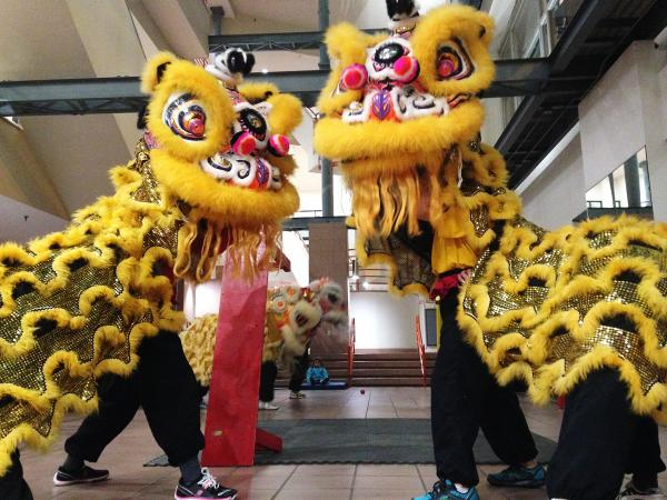 More than two dozen Asian-American women ranging from their mid-teens to their late 50s together form Gund Kwok's lion and dragon dance troupes.