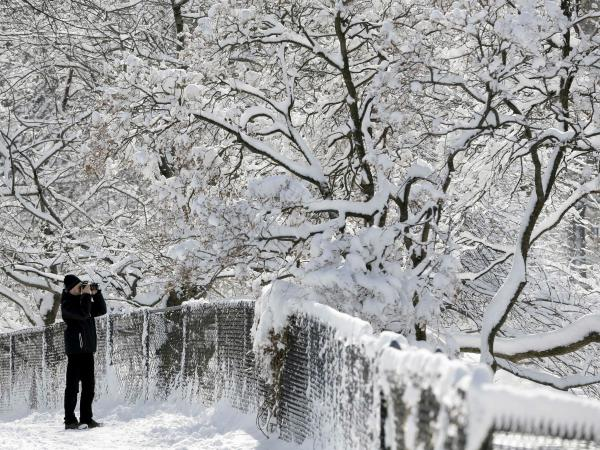 This man stopped to take pictures of the snow-covered trees in Manhattan's Central Park on Tuesday.