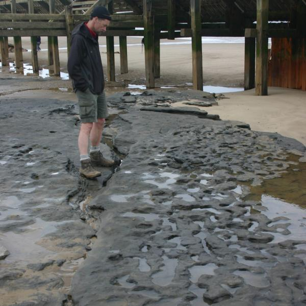 The Happisburgh site in Norfolk, Britain, where the earliest evidence of human footprints outside Africa has been found on the Norfolk Coast.
