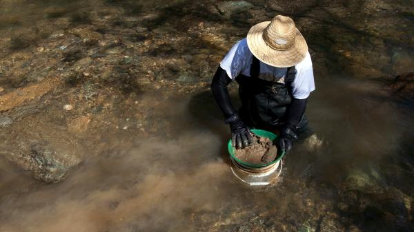 A man looks for gold in Woods Creek in Jamestown, Calif., in 2011.