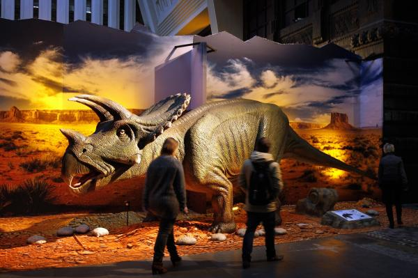 How do you explain the dinosaur fossil record if the world is only 6,000 years old?