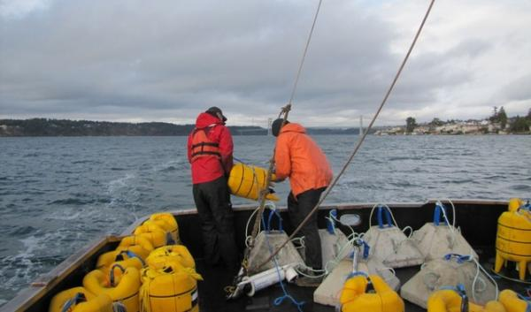 The crew of the research vessel Chasina gets ready to drop an acoustic telemetry receiver 300 feet down into Puget Sound. The device will record tagged steelhead as they swim out of their spawning rivers.
