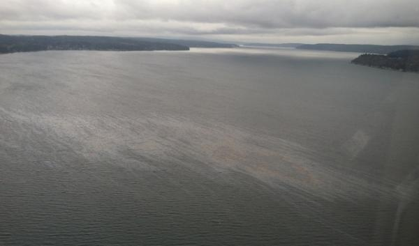 The view from an airplane window of the sheen on Hood Canal in Puget Sound following Monday's Naval Base Kitsap Bangor.