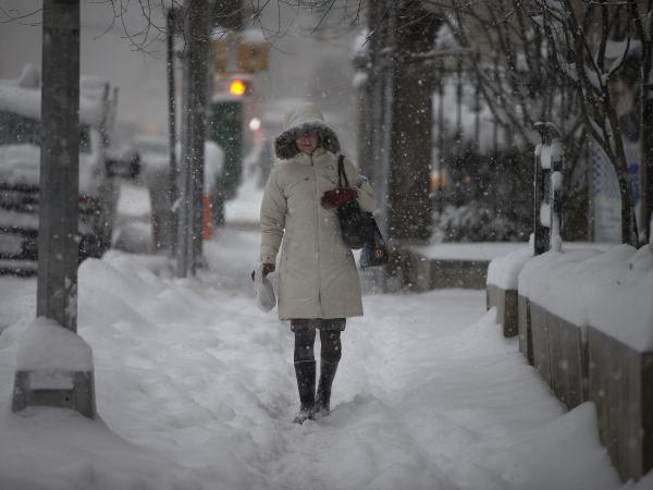 Snow was piling up along Manhattan's Fifth Avenue early Thursday morning.