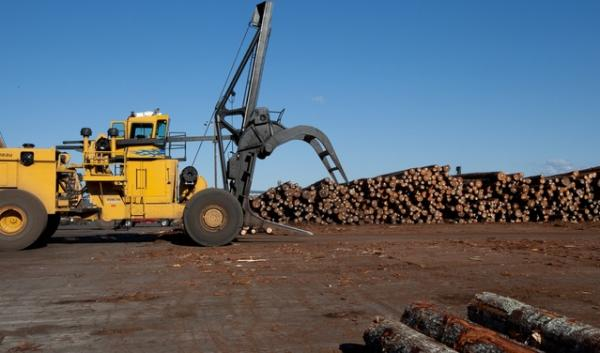 West Coast log and lumber exports rose sharply in 2013