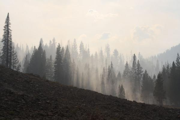 The Beaver Creek Fire near Sun Valley, Idaho, covered more than 100,000 acres in 2013.