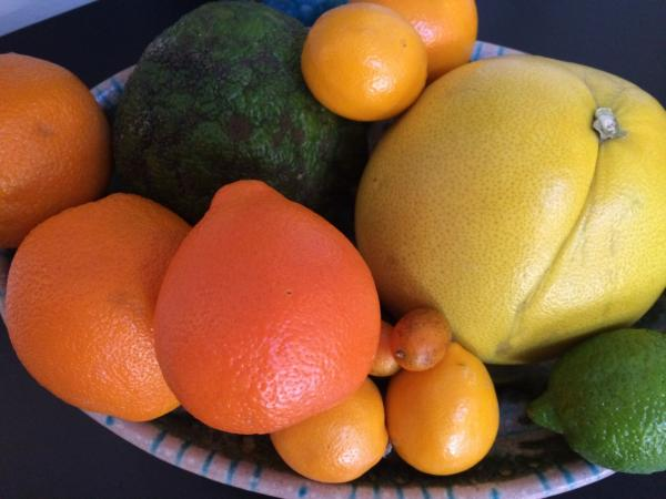 Kathy's fruit bowl includes navel orange, green ugli fruit, juice oranges, pummelo, cara cara orange, minneola tangerine, tiny kumquats, Meyer lemons and lime. (Kathy Gunst/Here & Now)