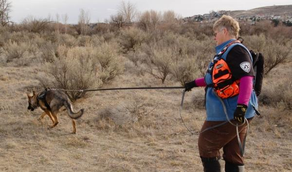 Donna Dill is training her German shepherd, Tala, to search using a method called trailing. This is where dogs pick up the scent of a person and go find them.