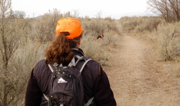 Gina McNearney and her dog, Kia, search for a volunteer missing hiker in the Chamna Natural Preserve. Kia sniffs the air for human scent and runs ahead of McNearney.